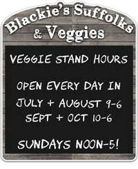 Veggie Stand Hours